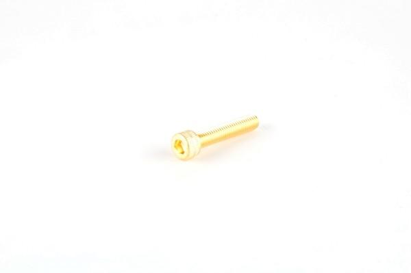 EH200 Schraube, 10-32 x 1.0 in. , Edelstahl, Gold-