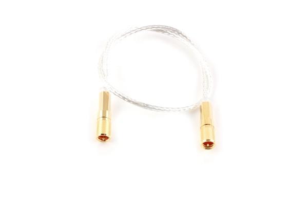 MicroDot Kabel, in-Vakuum, 10 in.